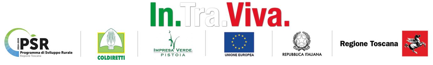 IN.TRA.VIVA Logo